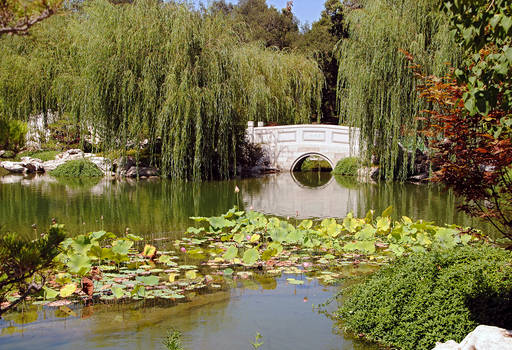 Lormet-Oriental-Garden-0025_01sml