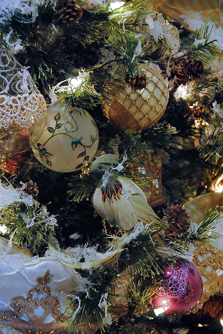 Lormet-Xmas-decor-0541C-sml by Lormet-Images
