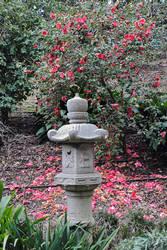Lormet-garden-0327D-sml2b by Lormet-Images
