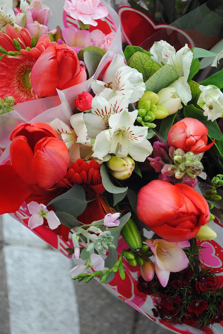 Lormet-flowers-0021B-sml by Lormet-Images