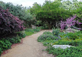 Lormet-path-0224H2d-sml2 by Lormet-Images