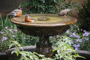 Lormet-fountain-0507B9-sml