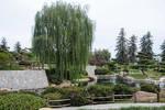 Lormet-garden-0064G2-2sml