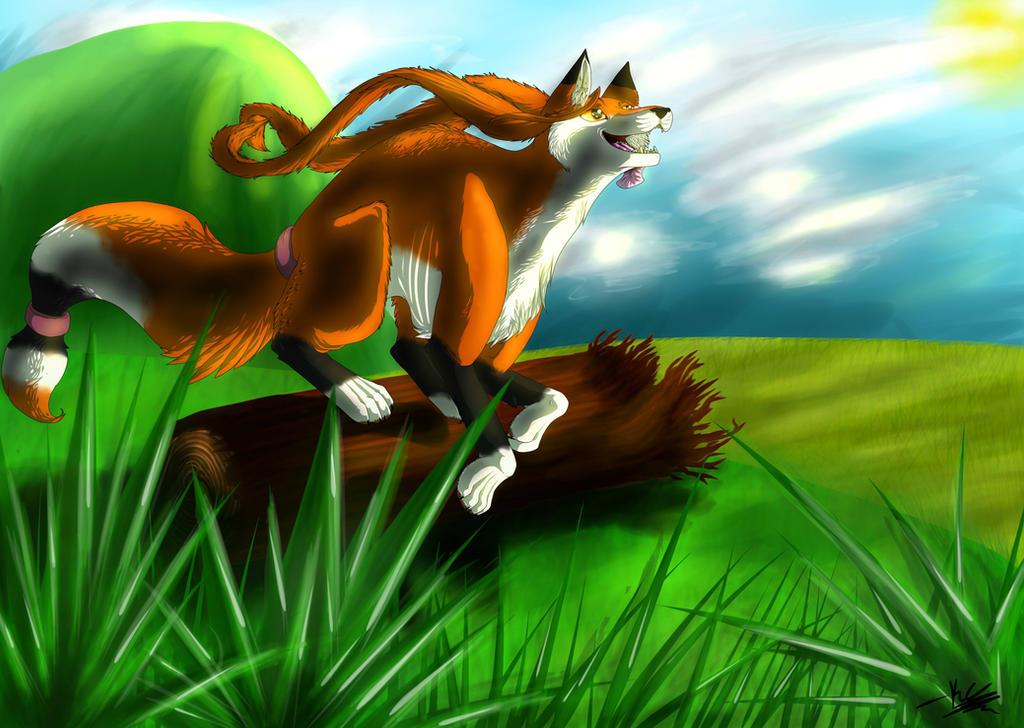 Running Through Fields by silver-moonwolf