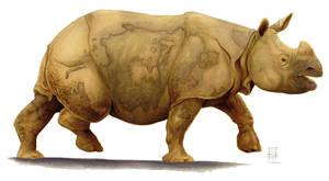 Indian Rhino_'Rhimaperos' by Smnt2000