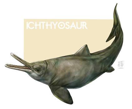 Exercise_Ichthyosaur