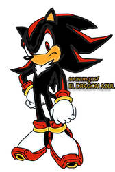 SHADOW THE HEDGEHOG VERSION FINAL by socramgns