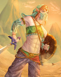 Gerudo Link by Papaya-Whip