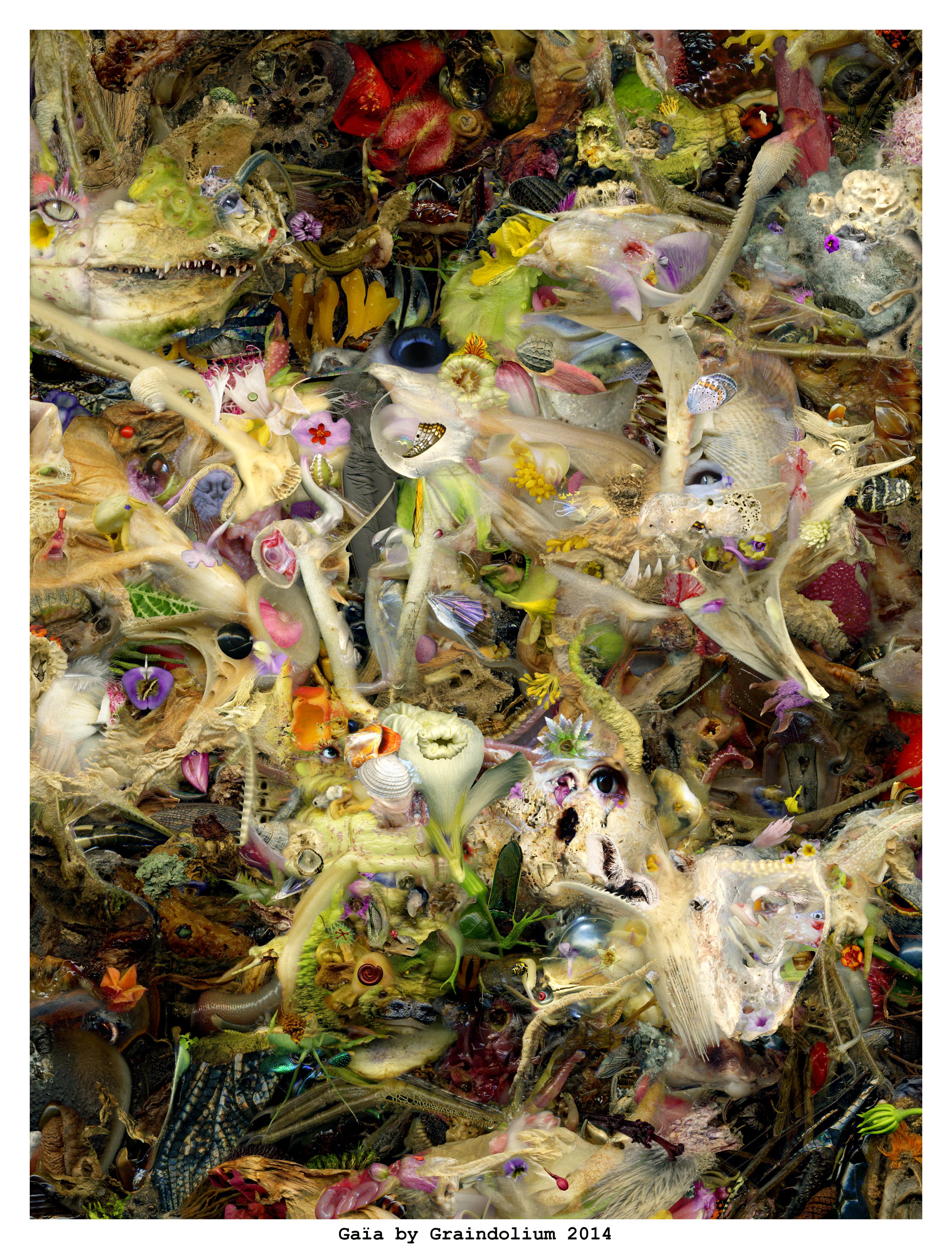 Gaia by Graindolium