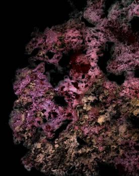 Antimatiere Organisme