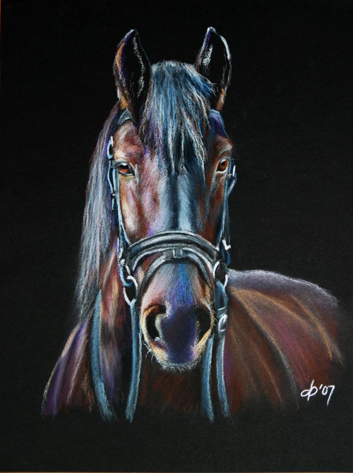 Friesian horse pastel by corienb