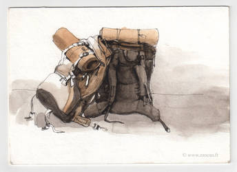 Two backpacks by zancan