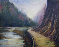 Chocholowska Valley by mmartkaa