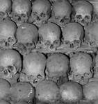 Skull Background tile Texture Seamless