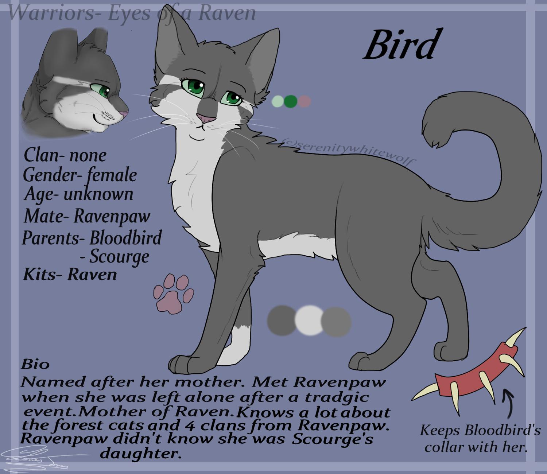 Bird- Reference Sheet By Serenitywhitewolf On DeviantArt