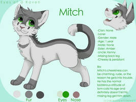 Mitch reference sheet by PaintedSerenity