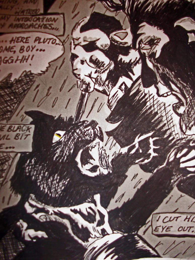 black cat edgar allan poe thesis Summary more than any of poe's stories, the black cat illustrates best the capacity of the human mind to observe its own critical essays edgar allan poe and.
