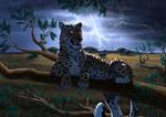 Leopard on acacia (com) by ElenPanter