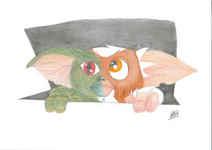 Gizmo / Gremlins Transformation