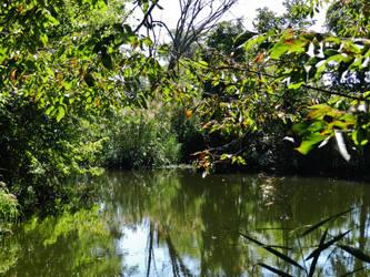 Sandy Point Reflecting Pond by Matthew-Beziat