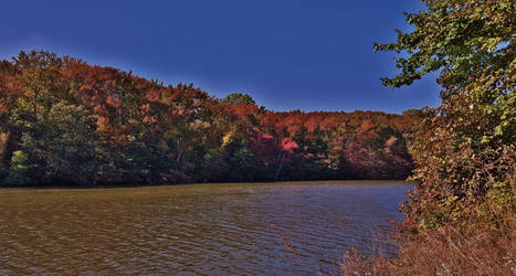 Early Autumn At Deep Pond 2016 by Matthew-Beziat