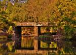 Autumn Railroad Bridge 2016 by Matthew-Beziat