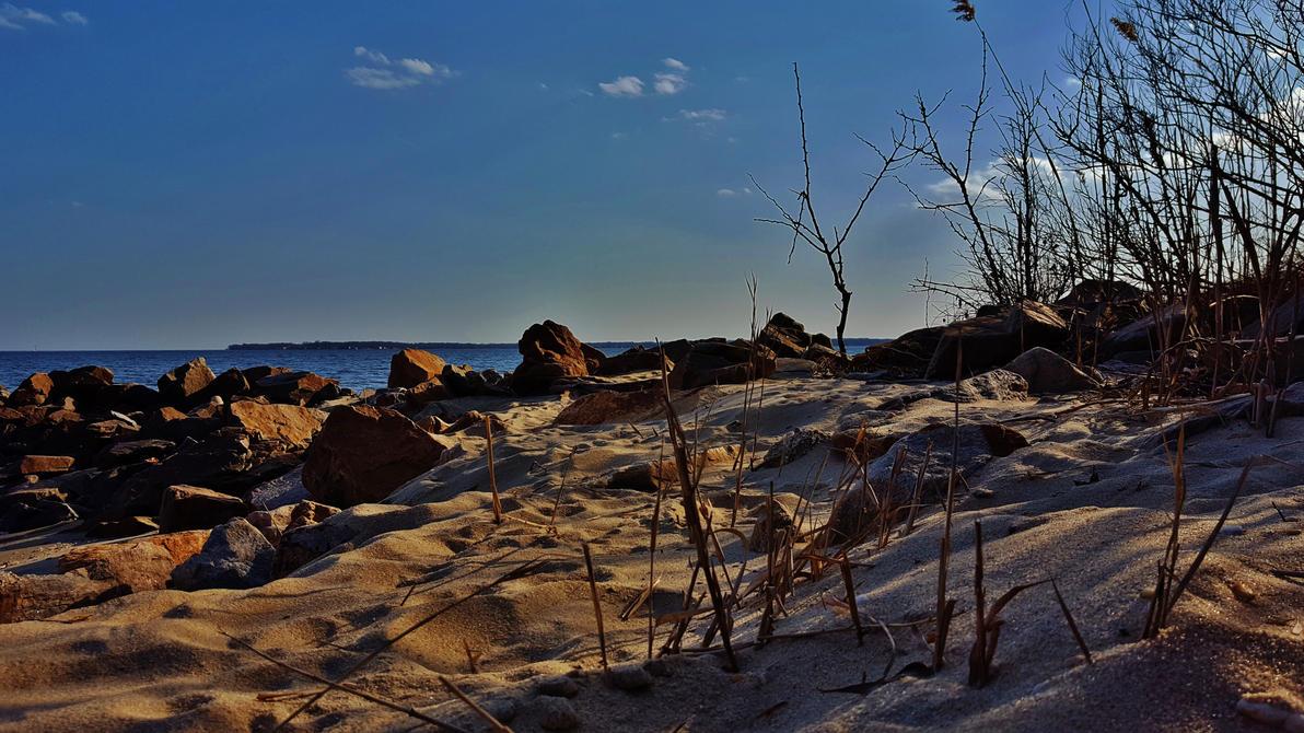 Rocks And Sand On The Chesapeake Bay by Matthew-Beziat
