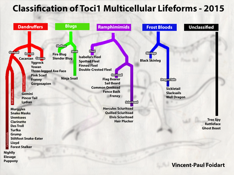 Classification of Toci1 Multicellular Lifeforms