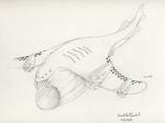 Tunjera - Skywhale