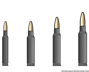 Polymer-Cased Ammunition