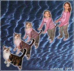 Cat Morph III by Aizxana