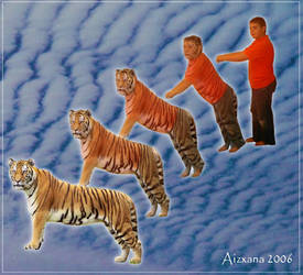 Tiger morph for Anvisionor. by Aizxana