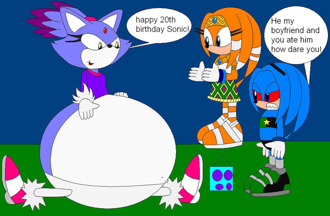 happy 20 birthday Sonic by shadevore
