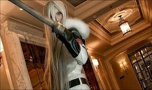 squalo with sword