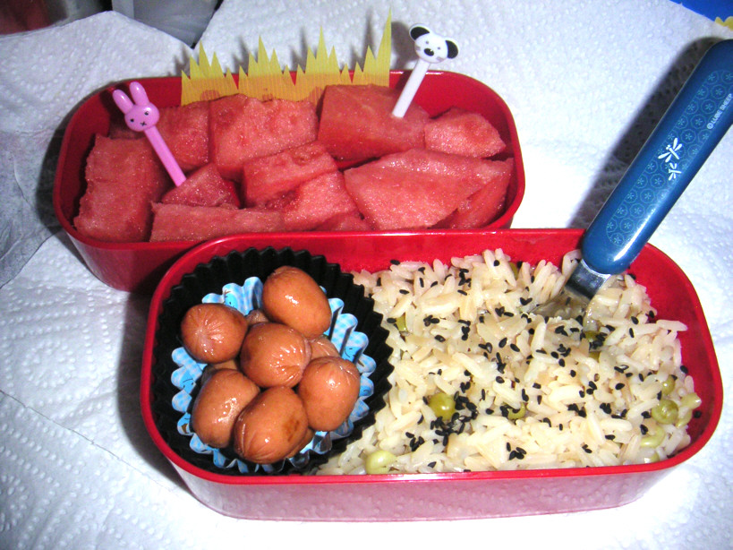 Quick Bento by Medisante