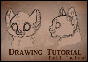 Drawing Tutorial Part1 - Head by Miosita
