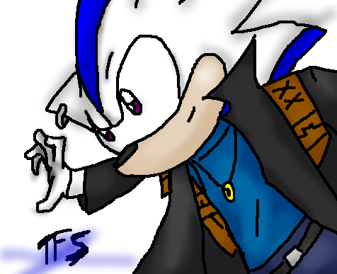 TFS: Chaz The Hedgehog by shinkenmaster