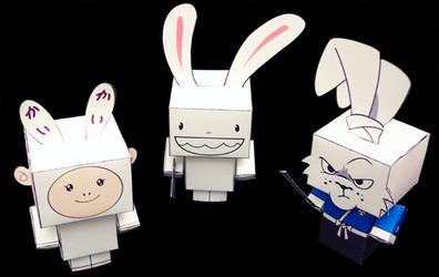 Follow the White Rabbits