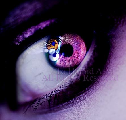 fantasies of my own by Deeevilish