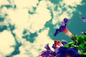 flying.. by Deeevilish