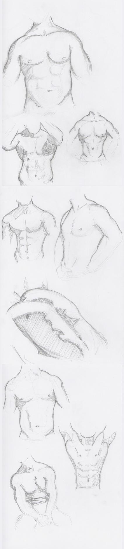 Body Study 1 by NeoWolf06