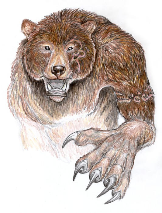 Bear by Wolfsjal
