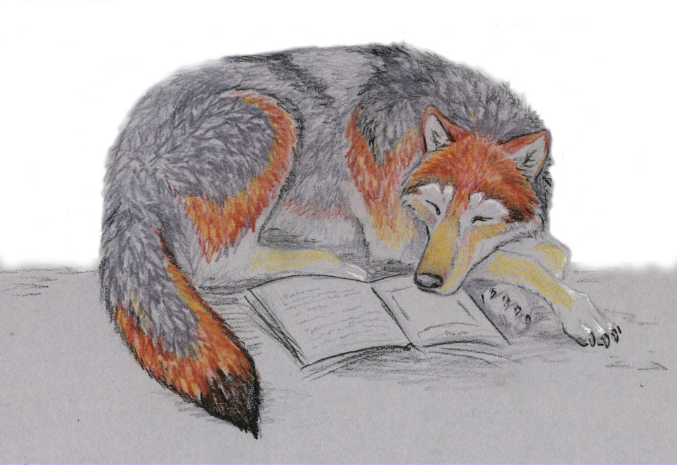 curled up with a good book by Wolfsjal