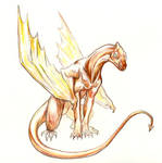 my other dragon