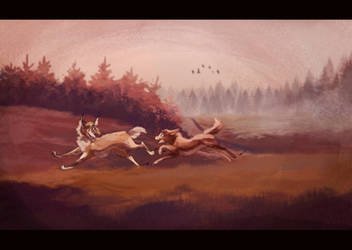 Run across the valley by Darkpaw2001