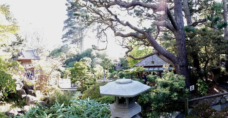 Hagiwara Tea Garden by Muffyn-Man