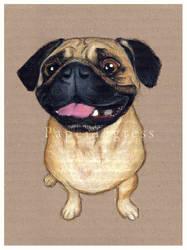 Pug by papertigress