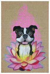 Zen Boston Terrier by papertigress