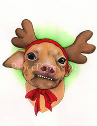 @tunameltsmyheart reindeer by papertigress