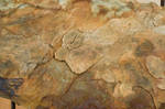 Rock texture 1